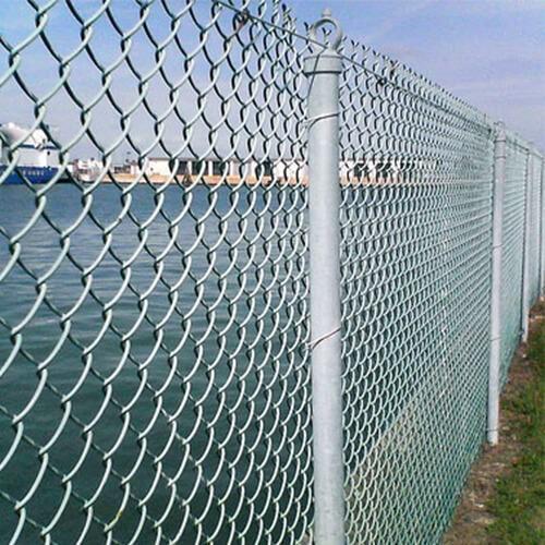lưới B 40 hải phòng